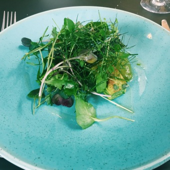 pea souffle pieces and salad